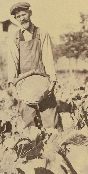 Gardener atChico